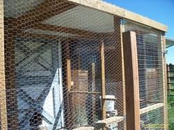 Build A Chicken Run Gardenerscott Com